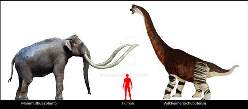 Proboscidiean vs Sauropod