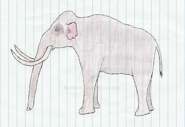 Mammuthus exilis