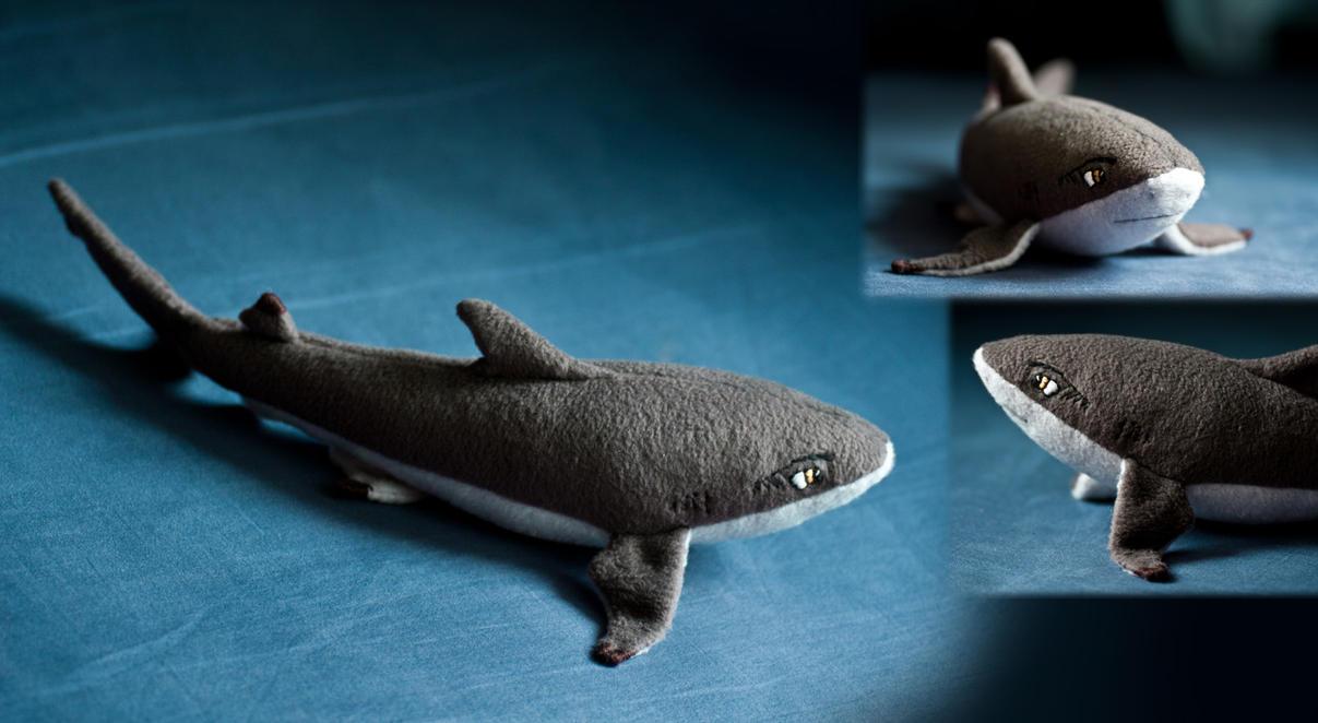 Jack the Black Shark by sharkann