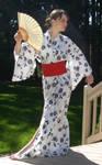 Kimono Krazy 23 by PersephoneStock