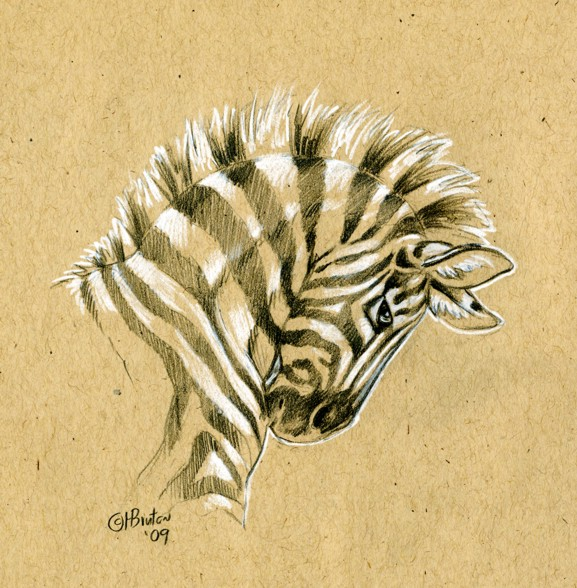 Brown Paper Zebra Sketch