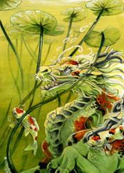 Koi Dragon by Hbruton