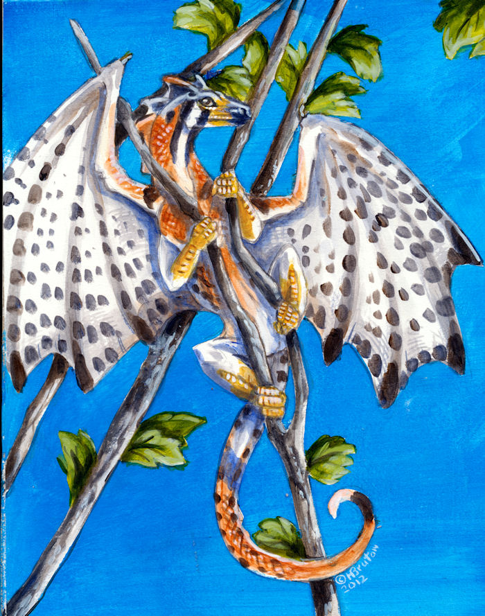 kestrel Bird Dragon by Hbruton