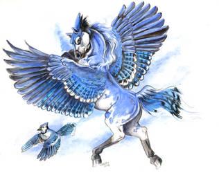 Bluejay Pegasus by Hbruton
