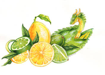 Citrus Surprise