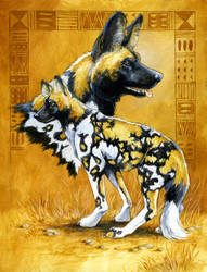 Wild Dog Totem Card by Hbruton