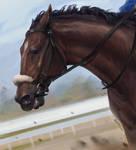 Race Horse Speedpaint [+video!] by Seadraz