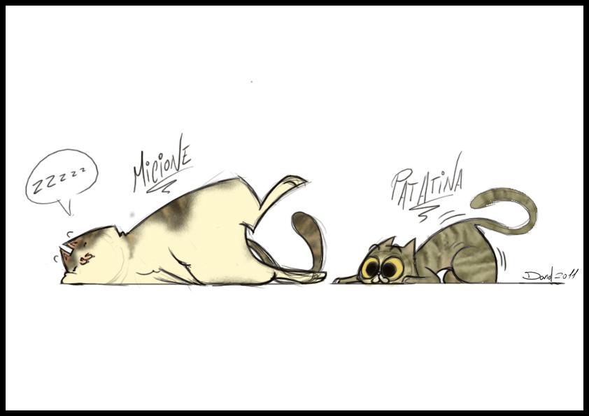 Micione e Patatina by David230674