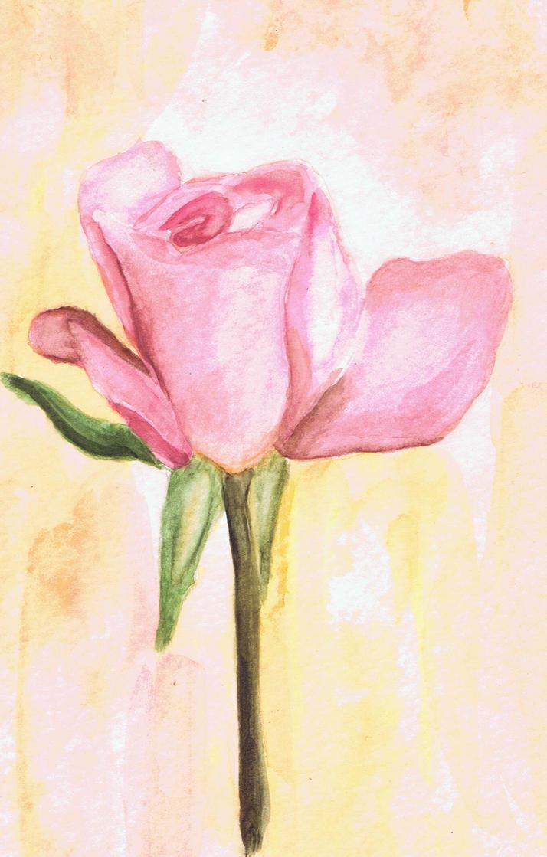 Nina's Rose by FaisanDore