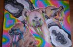 psychedelic hyenas