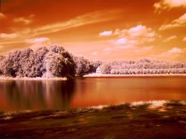 infrared. by JustOldPurpleAngel