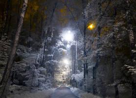 night tracks by JustOldPurpleAngel