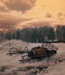 forgotten field