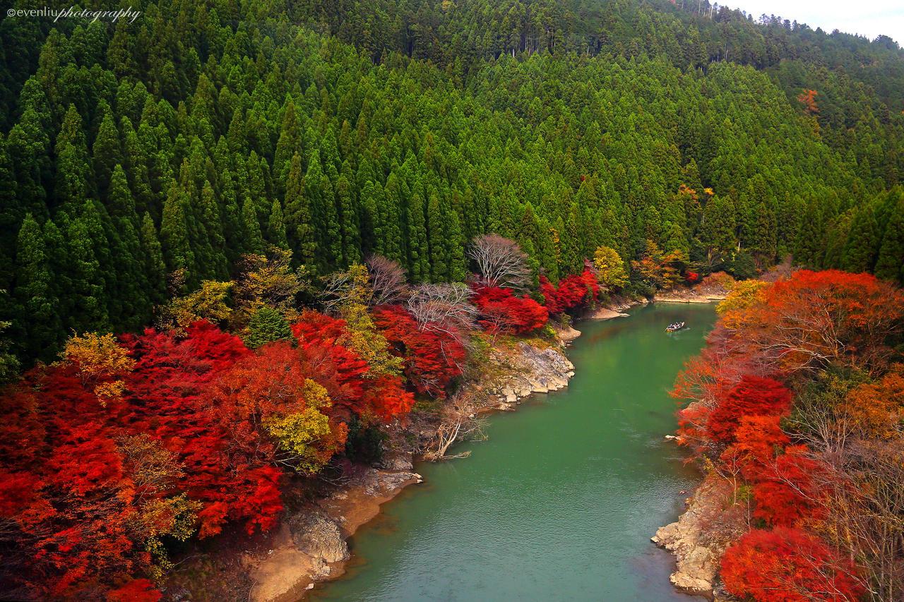 Arashiyama Kyoto by evenliu