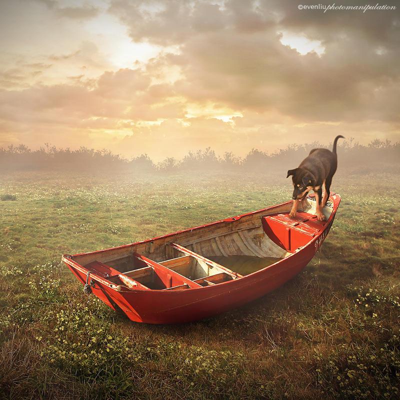 boat by evenliu