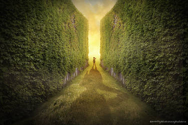 exit by evenliu