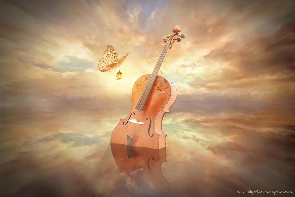 cello by evenliu