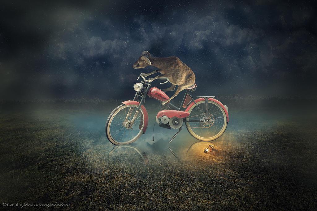 motorbike by evenliu