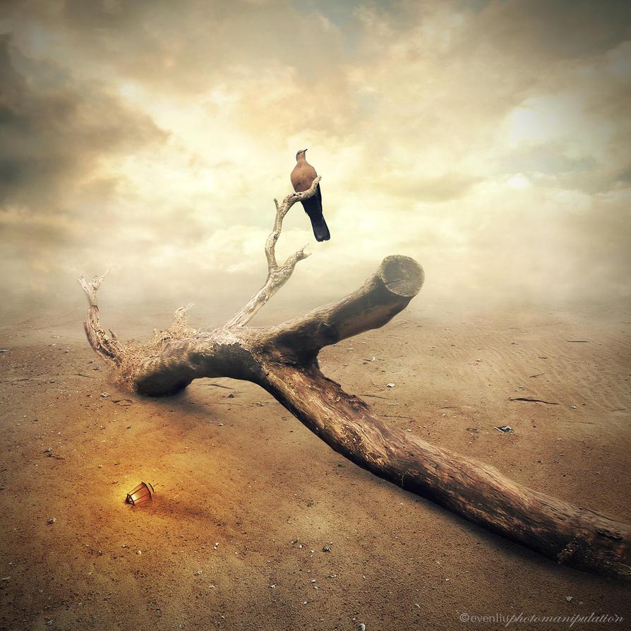 last wood by evenliu