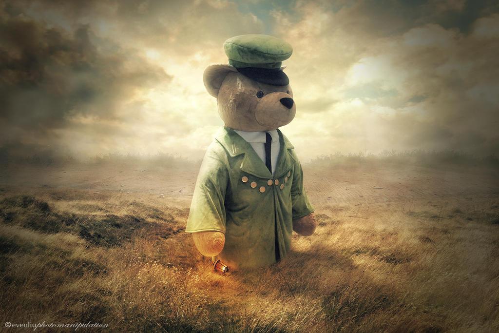 teddy by evenliu
