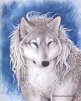 Winter Wolf by vashley