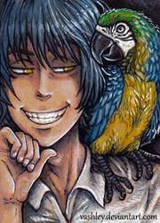 Birds Messenger
