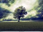 Photo Manipulation - Tree of Wisdom