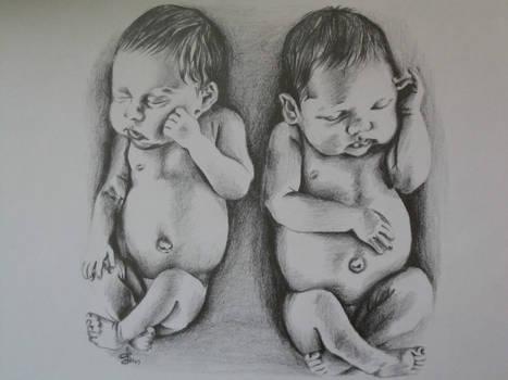 Szkice twins