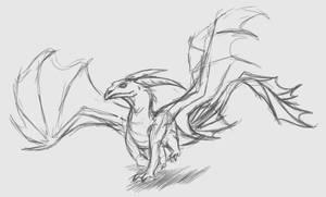 Tytonidae Dragon (2020 Redesign Sketch)
