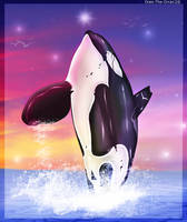 Dancing by Oreo-The-Orca12