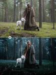 Dual Tone - Photoshop Actions