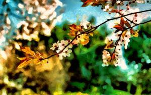 Springtime by montag451