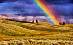 The Rainbow by montag451