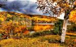 Autumn Lakeside