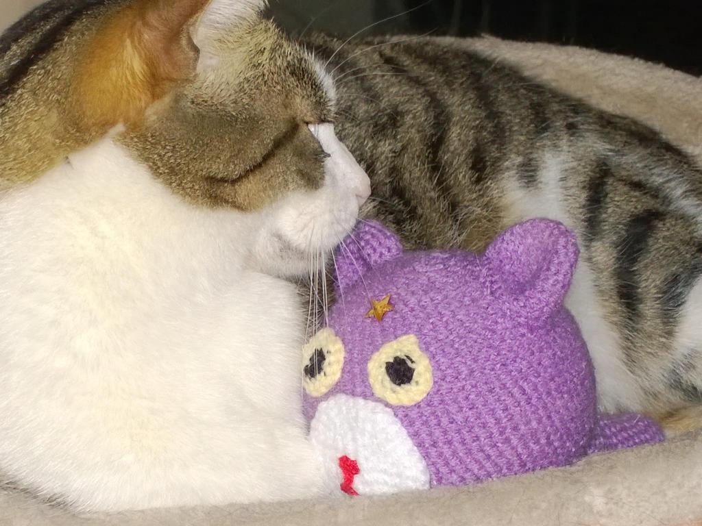 Athos und Lavendel 2 by sunnight1