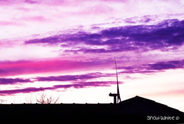 Purple sunset by Sno0wWhite