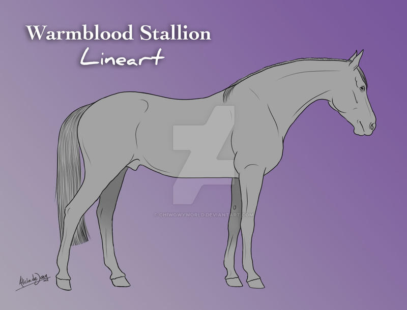 WB Stallion Lineart by AliceYung