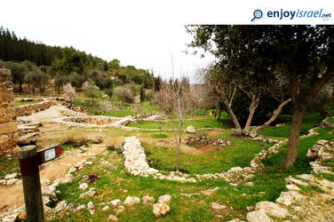 01.03.2017-Jerusalem area / hills