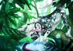 Co: Jungle adventure