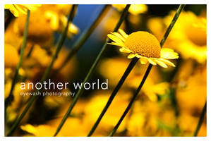 another world. by eyewash