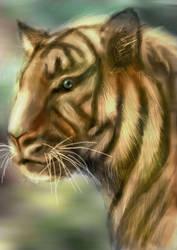 Harimau Sumatera KW by fathskie