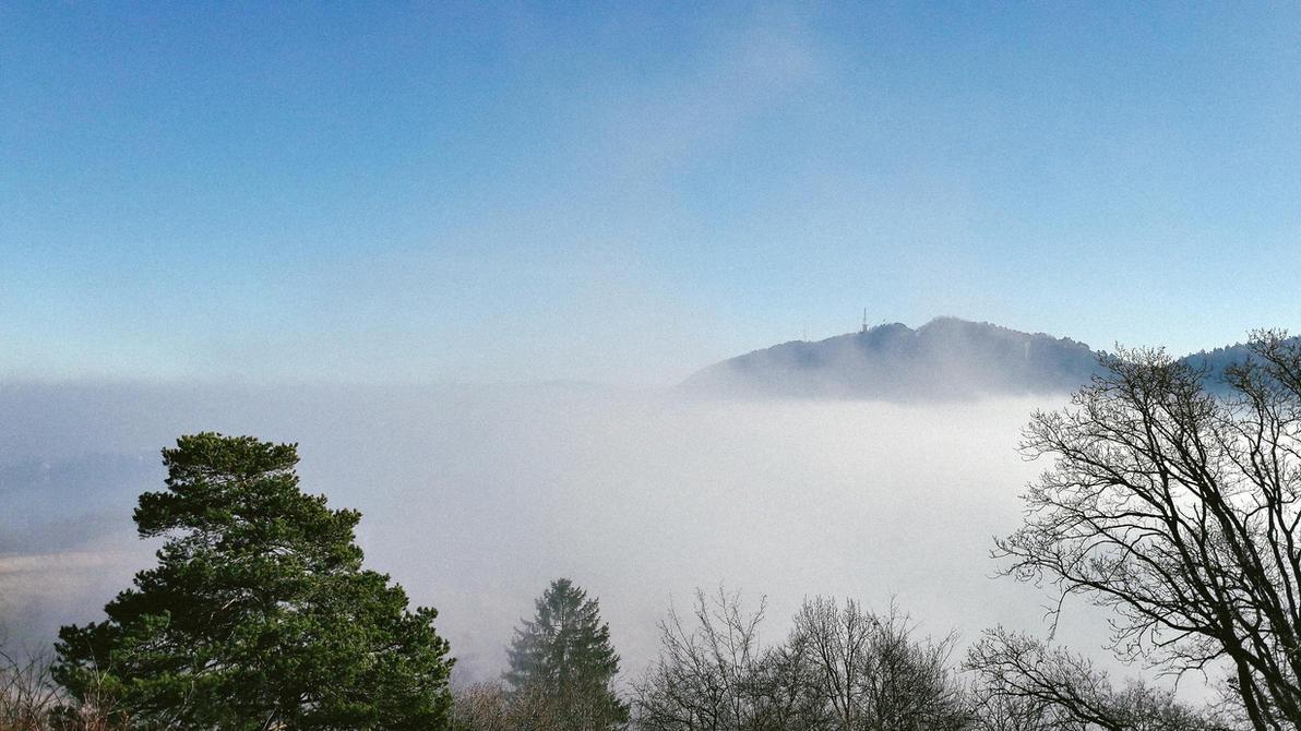 Fog, fog, fog by deyush08
