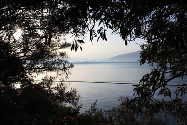 See Sea by MaeraFey