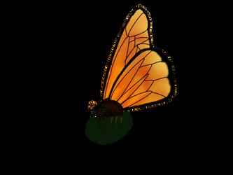 Butterfly by MaeraFey