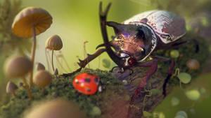 BeetleBeetle