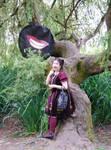 Cheshire Cat Smile....