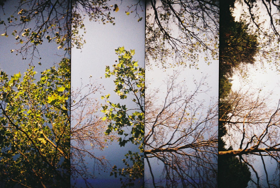 Supersampler by spiti84