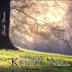 Ayeb - Kenny Neal -