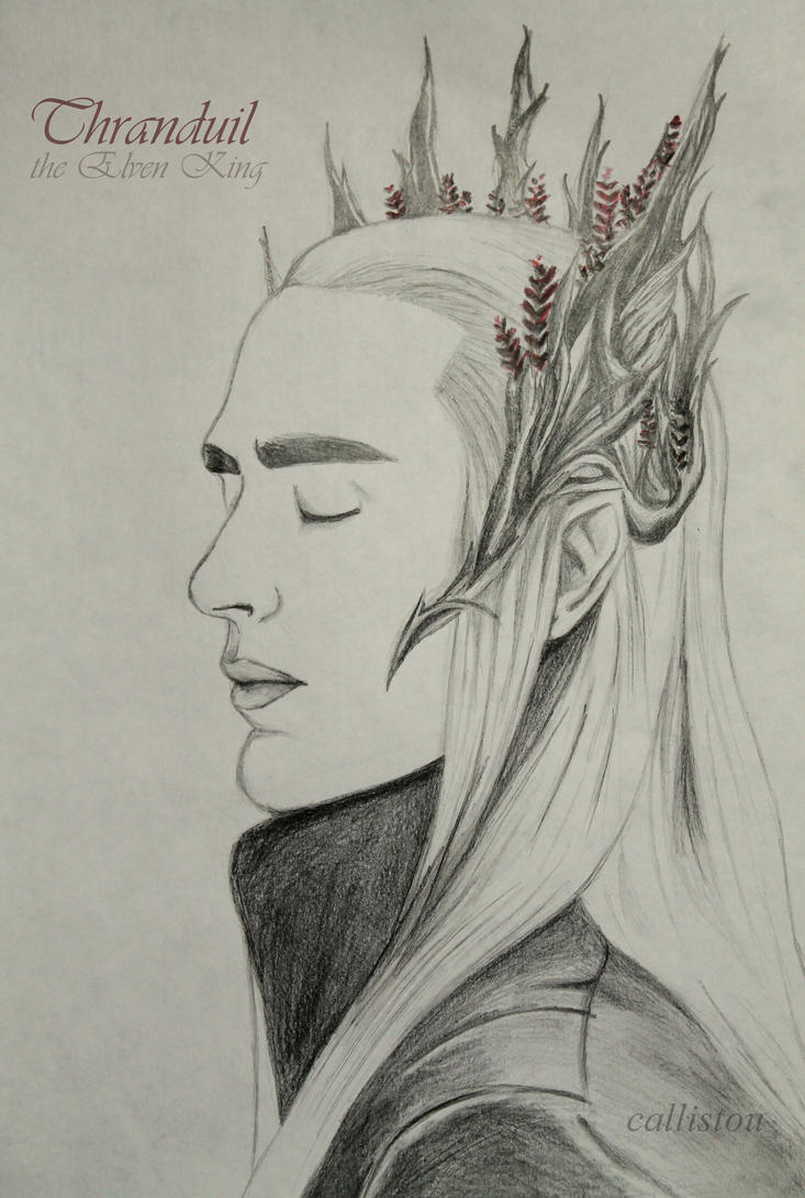 The Elven King by Thavia