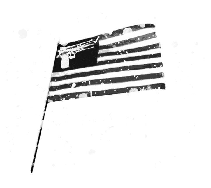 the gun and stripes